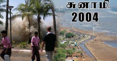 2004 tsunami videos and photos