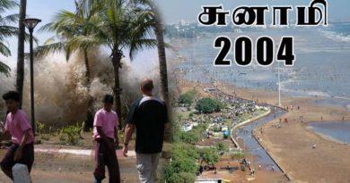 2004 tsunami videos and photos