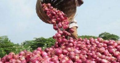 Onion 1kg 10 rupees