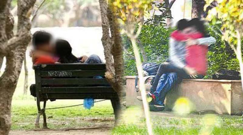lovers transgressive in vandaloor zoo