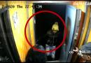 Do not open the door before the train stops