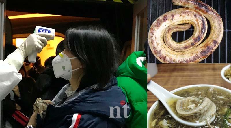 coronary virus outbreak in china virus spreding from snake